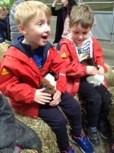 Ilkley Nursery - Farm trip