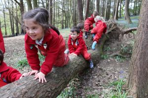 Children crawl along a log in the woods