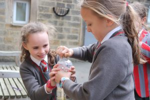 Ghyll Royd pupils work together in science experiment