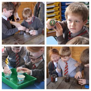 Ghyll Royd School pupils planted seeds outside