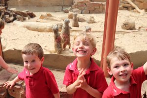 Ilkley Nursery children grinning for a picture next to the meerkats at Tropical World